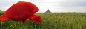 A view across the field at Mont St. Michel, France