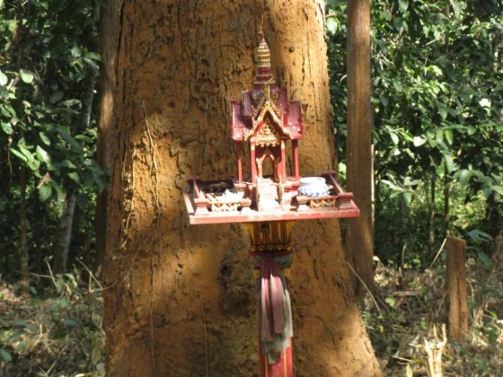 Thailand Tree Shrine
