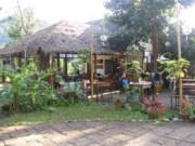 Chiang Dao Nest Restaurant