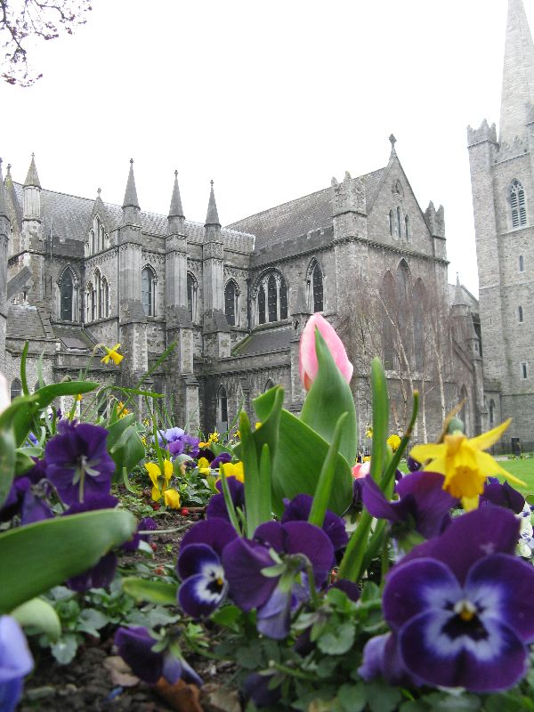 things to do in Dublin Spring flowers in front of St. Patrick's Cathedral in Dublin