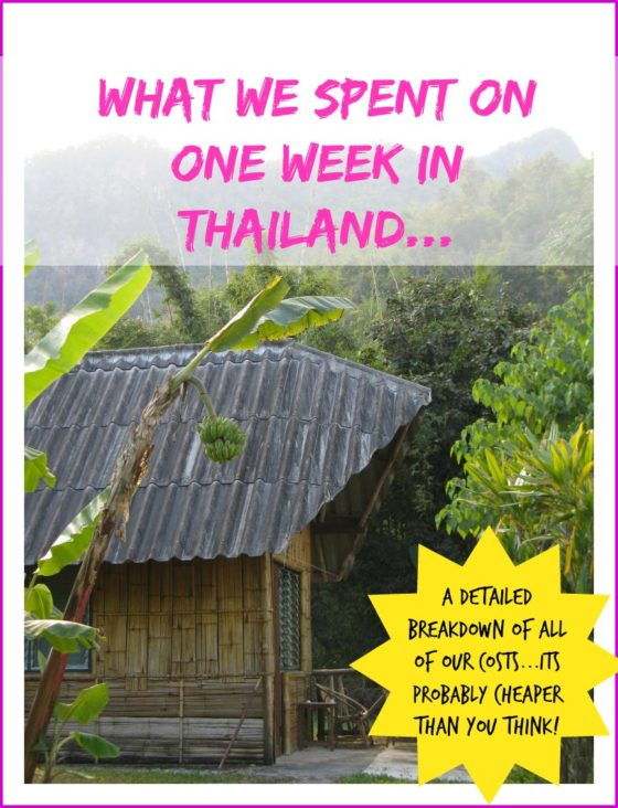 A recount of money spent on a recent trip to Thailand (January 2011) to give you an idea about how to budget for one week in thailand budget
