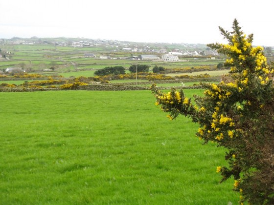 St Patricks Day in Ireland Irish COuntryside