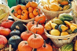Fall gourds and pumpkins at the Harrisonburg Farmers Market