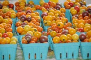 Cherry tomatoes at the Harrisonburg Farmers Market