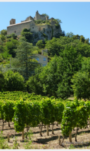 Cote du Rhone Villages