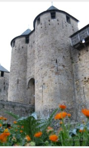 Carcasonne, France (this is the inner castle inside the walls)