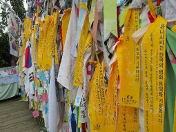 Peace ribbons at the edge of the DMZ in South Korea