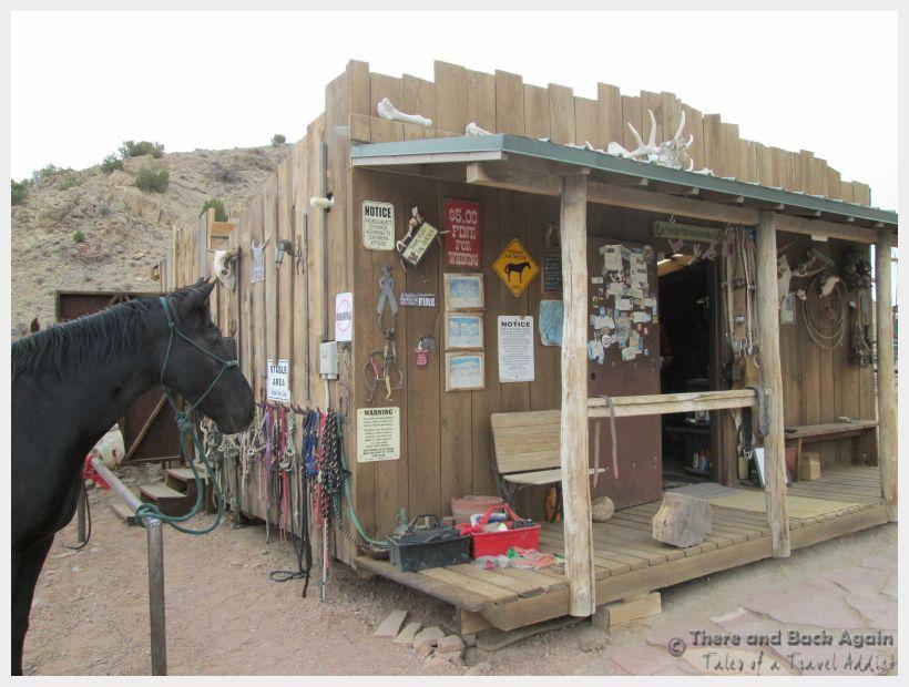 Santa Fe Broken Saddle Horse 1