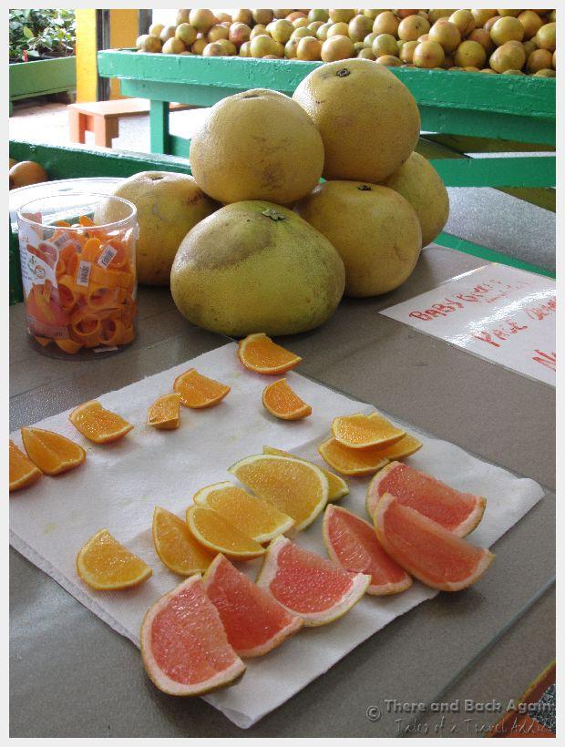 Florida Citrus 4
