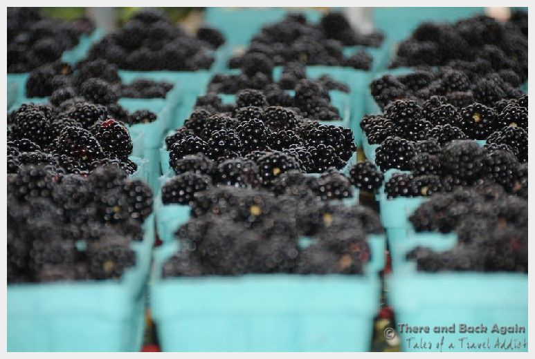 Harrisonburg Virginia Farmers Market Blackberries